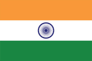 India's Registration Committee Adopts New Rules for Import and Manufacturing