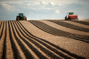 Two tractors plant in field. (Photo courtesy of Shutterstock)
