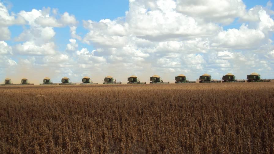 Brazilian Agriculture