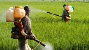 Indian-pesticides